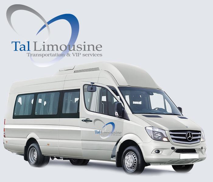 tal limousine, mercedes vito, vip airport service